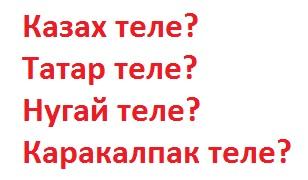 Казахский и татарский языки