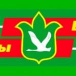 «Тол буйлары» («Притулвье») җирле телерадио тапшырулары муниципаль бюджет учреждениесе