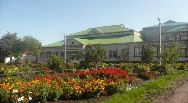 Деловая поездка в Алькеевский район — как обстоят дела в татарской гимназии?