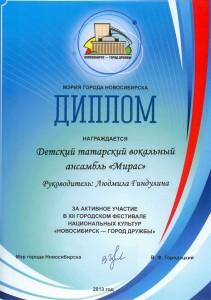 диплом новосибирск