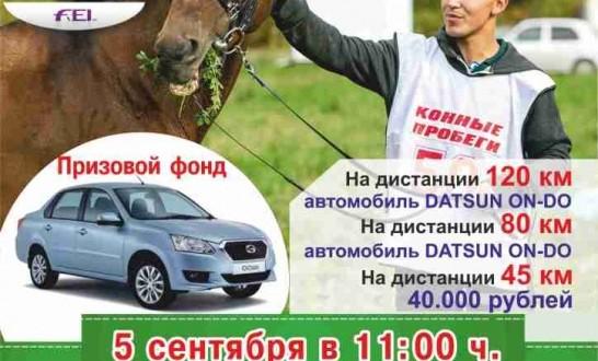 В Нижней Тавде состоятся Международные соревнования по дистанционным конным пробегам памяти Тимура Насырова