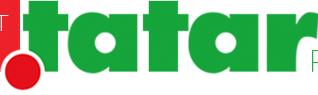 За полтора года на домене .tatar зарегистрировалась более 1000 пользователей
