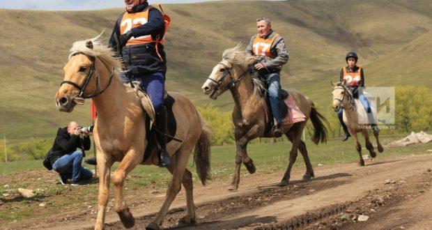 Татар токымлы чабышкылар бөтен дөньяга танылсын иде