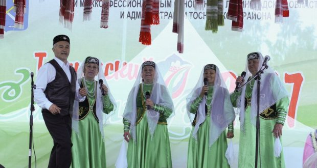 В Ленинградской области прошёл 20-й юбилейный Тосненский Сабантуй