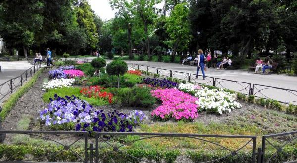 In Simferopol, an important part of the Kurban Bairam will be  competition Kuresh