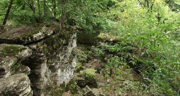 Зарубежные археологи исследуют Татарское городище в Ставрополе